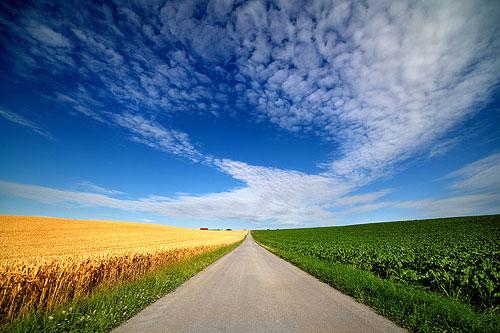 A sunny path under a blue sky